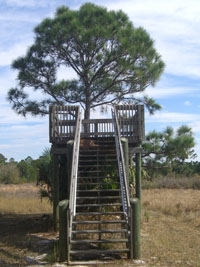 Pinelands Preserve