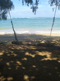 Swing at Kahana Bay