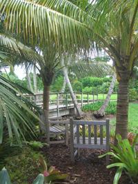 Mounts Botanical Garden - West Palm Beach