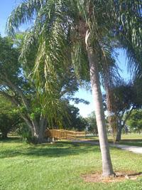 John Prince Park - Lantana, Florida